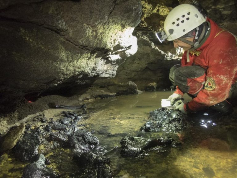 Caver surveying