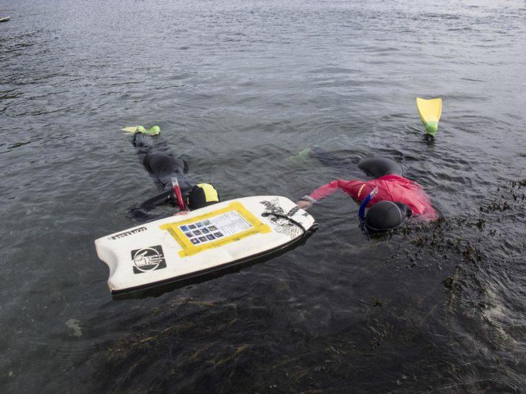 Snorkel Participants